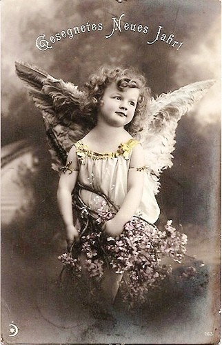 DOLCE ANGELO.jpg